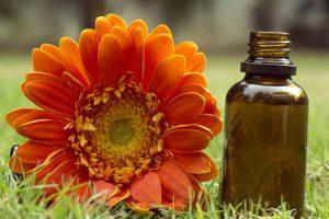 acompanamiento-flores-bach