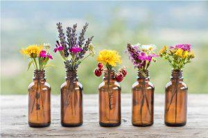 Menopausa-i-plantes-medicinals
